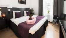 Best Western Hotels & Resorts satsar på en hundvänlig sommar