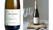 Ny ekologisk Champagne